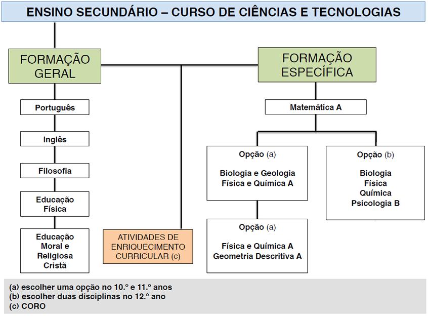 Ensino Secundário - Curso de Ciências e Tecnologias